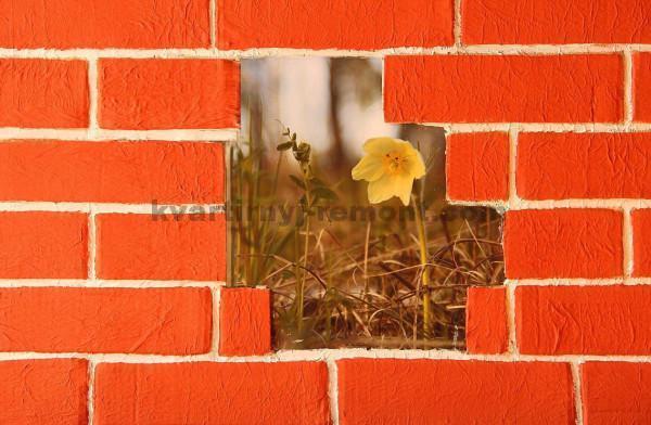 Фото: Покрашенная стена кирпичей