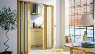 Межкомнатные двери-гармошка: варианты из разных материалов