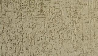 Вид стены с штукатуркой Короед