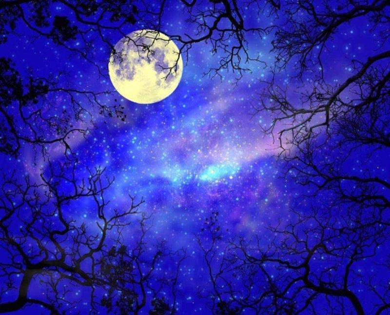 Луна и тысячи звезд