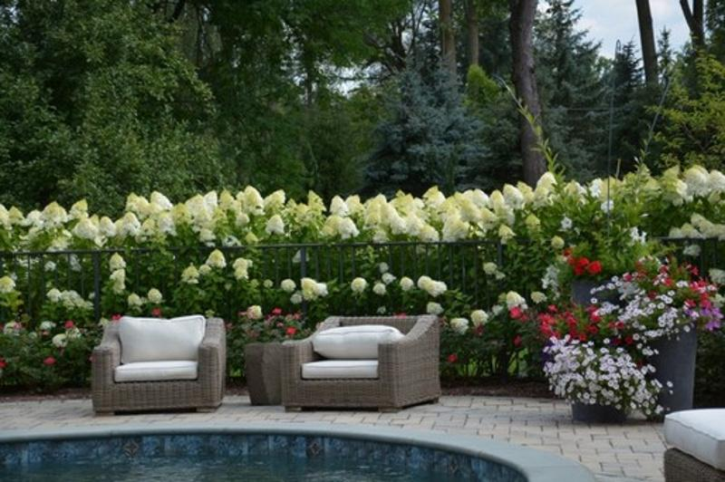 Цветы в зоне отдыха